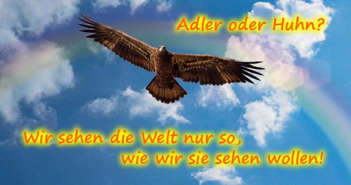 Adler oder Huhn?