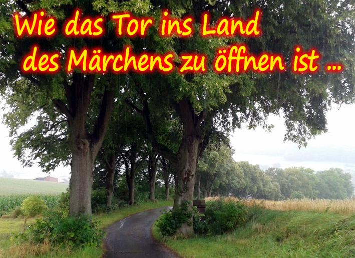 Das Tor ins Märchenland