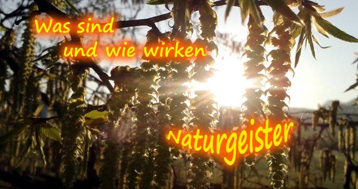Naturgeist - was sind und wie wirken sie?