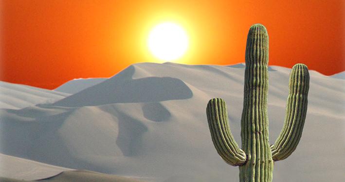Die Geburt in der Wüste